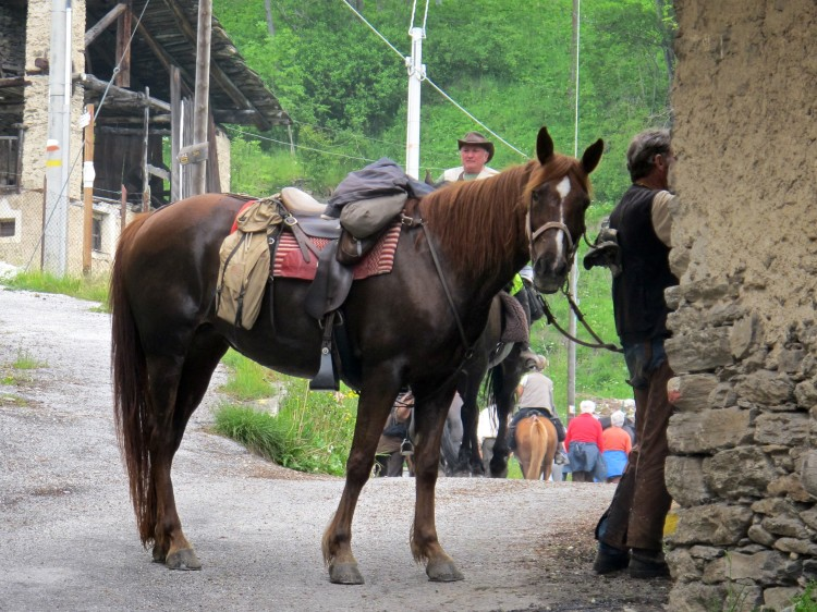 tour_a_cavallo- 017