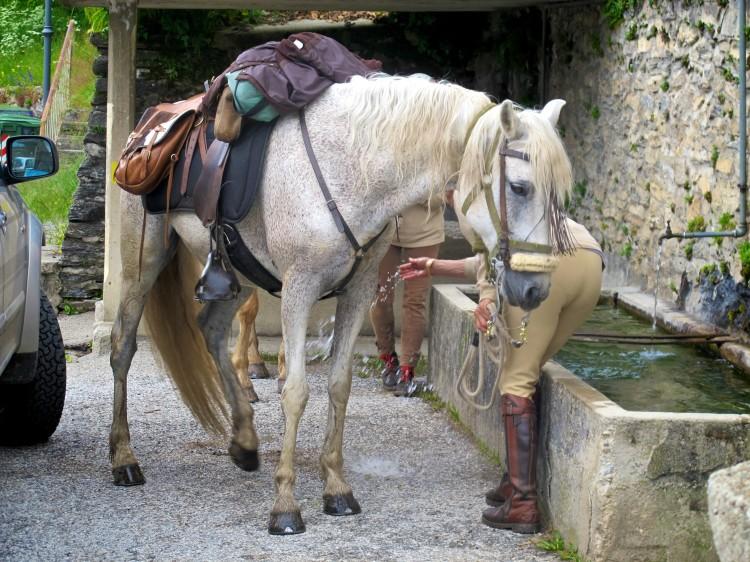 tour_a_cavallo- 019